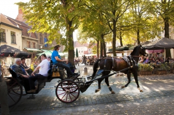 Sightseeing tour of Bruges by horse-drawn cab